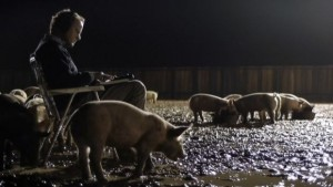 Upstream Color Carruth sampler pigs