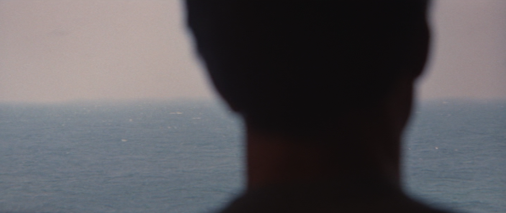 After that, there is a match-cut to the sea which then is invaded by the back of Brody's head. Brody is thus introduced by framing him against the water, like Chrissie was in the previous scene.